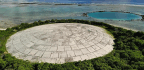 High Radiation Levels Found In Giant Clams Of Marshall Islands Near US Nuclear Dump