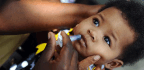 It Looked As Though Millions Of Babies Would Miss Out On A Lifesaving Vaccine