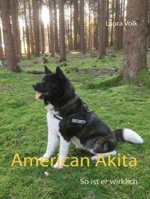 American Akita: So ist er wirklich