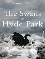 The Swans in Hyde Park