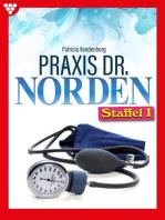 Praxis Dr. Norden Staffel 1 – Arztroman