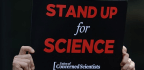 One Thing You Can Do to Stand Up for Science This Week