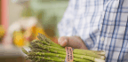 Why Food Reformers Have Mixed Feelings About Eco-Labels