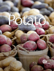 Potato: Botany, Production and Uses
