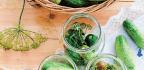 Plant-Based Probiotics and Prebiotics