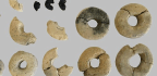 Way Back, When Bagels Were Tiny