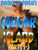 Cougar Island