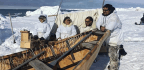 Rising Temperatures Worry Whaling Communities In Alaska