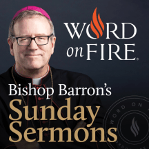 Bishop Robert Barron's Sermons - Catholic Preaching and Homilies
