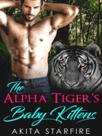 The Alpha Tiger's Baby Kittens