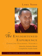 The Enlightened Experience