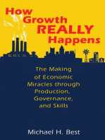 How Growth Really Happens: The Making of Economic Miracles through Production, Governance, and Skills