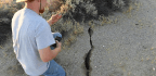 Earthquake Researchers Look For Lessons In The Trona And Ridgecrest Damage