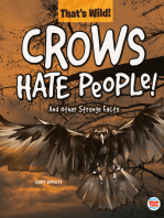 Crows Hate People! And Other Strange Facts