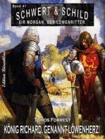Schwert und Schild – Sir Morgan, der Löwenritter Band 41