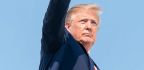 Trump's Numbers July 2019 Update