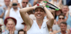 Simona Halep's Dazzling Wimbledon Victory
