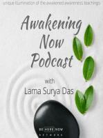 Ep. 29 - On Ram Dass