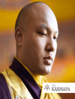 Karmapa Discusses Gender Equality and Effective Activism (Podcast Episode #003)