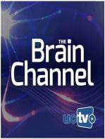 The Human Social Brain
