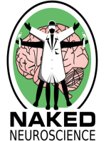 The Naked Scientists strip down the brain in Spain