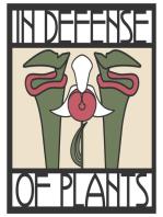 Ep. 122 - Understanding Ferns and Lycophytes