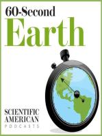 Environmental Issues Divide Presidential Contenders