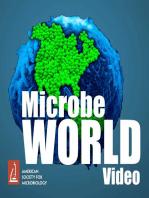 MWV96 - Antibiotic Resistant Bacteria