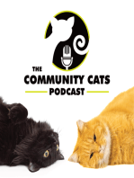 Keoni Vaughn, Executive Director of Lanai Cat Sanctuary