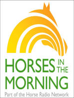 Horse Husband Roundtable with Mark and Kevin for 07-02-2019