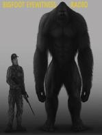 Bigfoot Eyewitness Episode 40