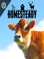 THE GOOD, THE BAD, AND THE UGLY YEAR 1 AT OUR NEW HOMESTEAD