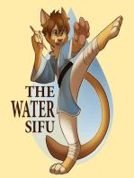 Water Sifu #26