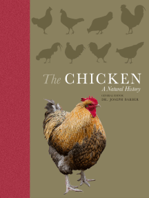 The Chicken: A Natural History