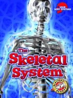 Skeletal System, The