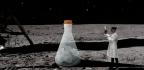 The Secrets of Moondust