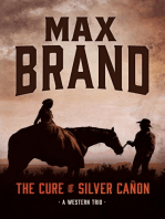The Cure of Silver Cañon