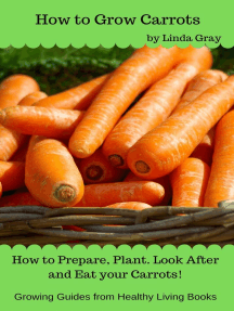 How to Grow Carrots: Growing Guides
