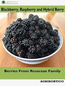 Blackberry, Raspberry and Hybrid Berry: Berries from Rosaceae Family
