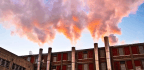 Can Folate Offset Air Pollution's Harm During Pregnancy?