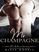 Mr Champagne (A Mr Billionaire Short Story)