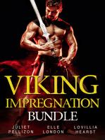Viking Impregnation Bundle