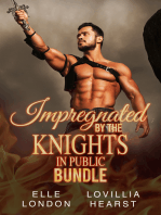 Impregnated By The Knights In Public Bundle