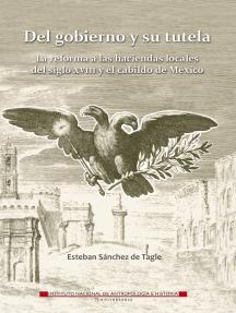 Del gobierno y su tutela: La reforma a las haciendas locales del siglo XVIII y el cabildo de México