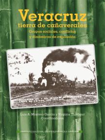 Veracruz, tierra de cañaverales. Grupos sociales, conflictos y dinámicas de expansión: Grupos sociales, conflictos y dinámicas de expansión
