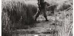 1st Australian Task Force