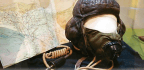 Roald Dahl's Flying Helmet