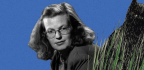 11 Famous Writers On The Genius And Influence Of Shirley Jackson