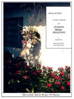 Indicador Alfabético De Estados Físicos Negativos E Respectivas Essências Florais De Bach Com Diferenciais