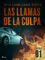 Las llamas de la culpa - Capítulo 1